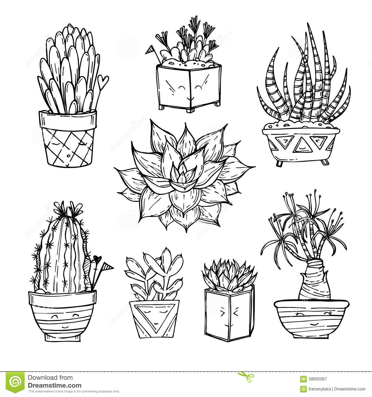 Line Drawing Cactus : Hand drawn illustration set of cute cactus and