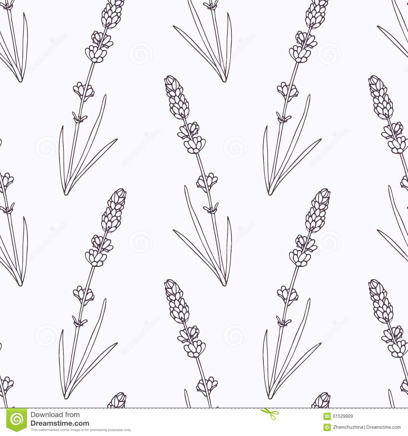 Hand Drawn Lavender Branch And Flowers Outline Stock