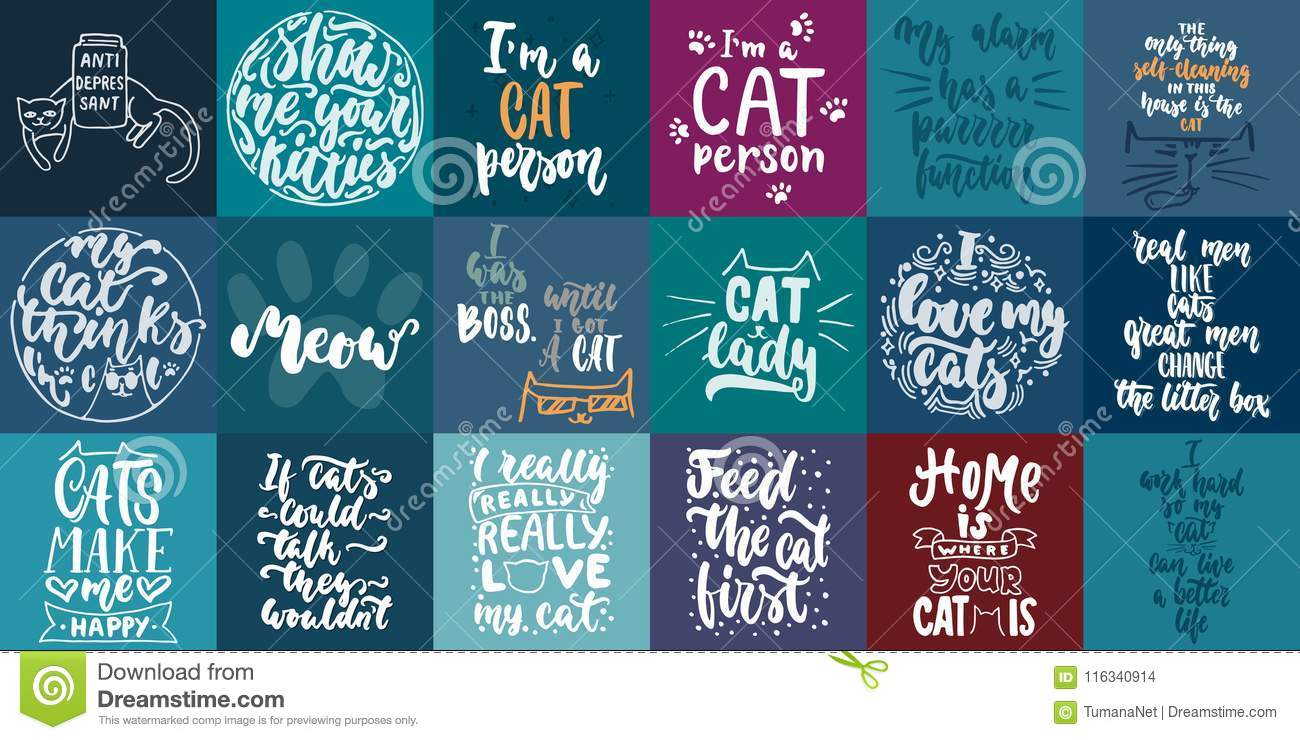 Hand Drawn Lettering Greeting Cards Collections About Cats Isolated