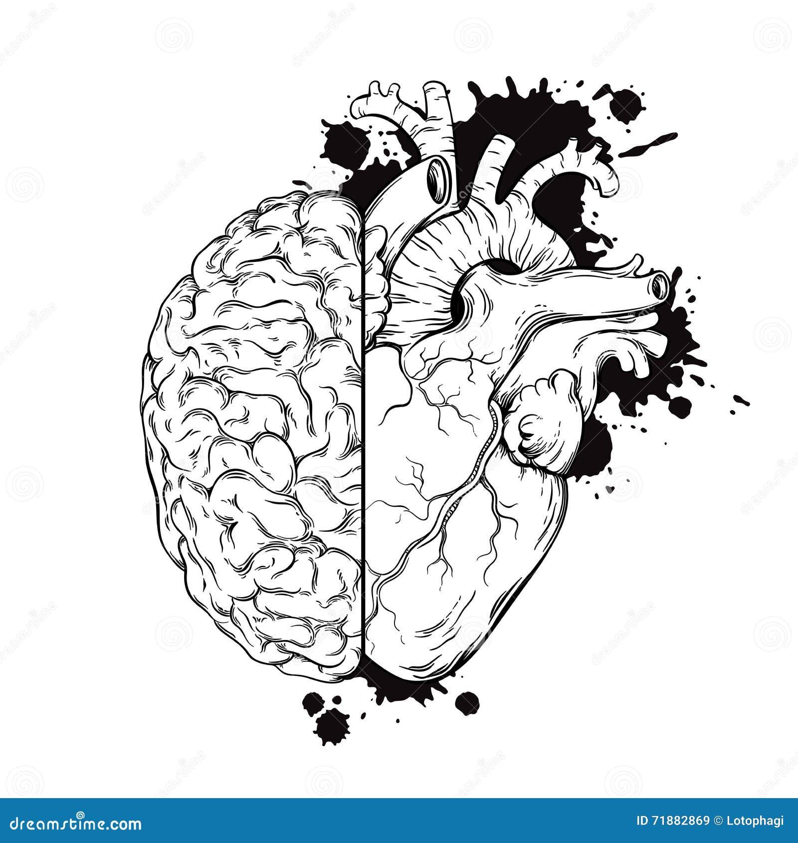 Human Brain Art Designs