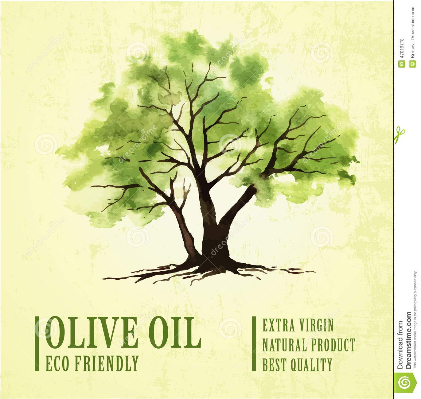 Old Olive Tree Stock Illustrations – 745 Old Olive Tree Stock ... for Tree Drawing With Watercolor  181obs