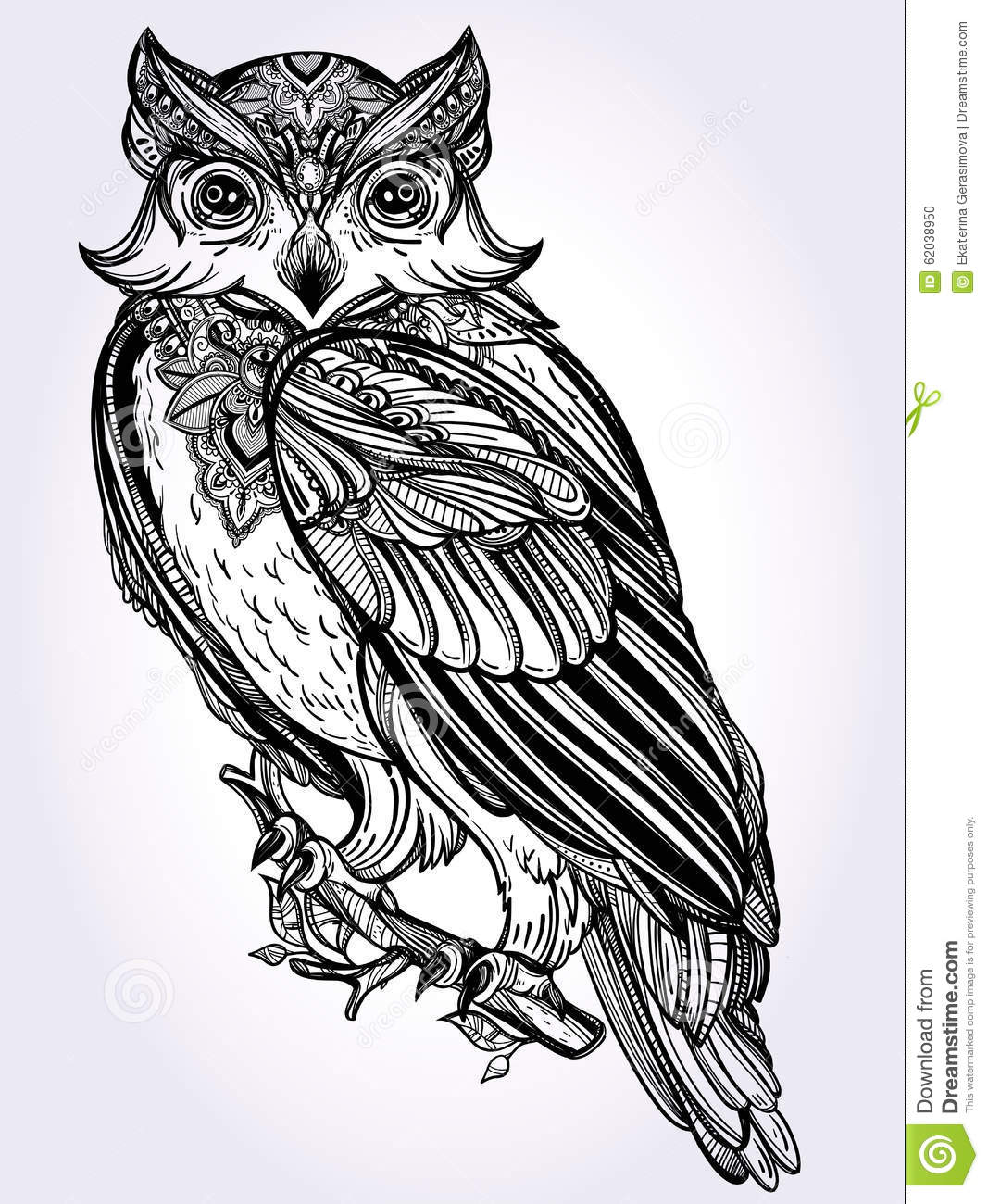 Hand Drawn Owl Design Vintage Style Stock Vector