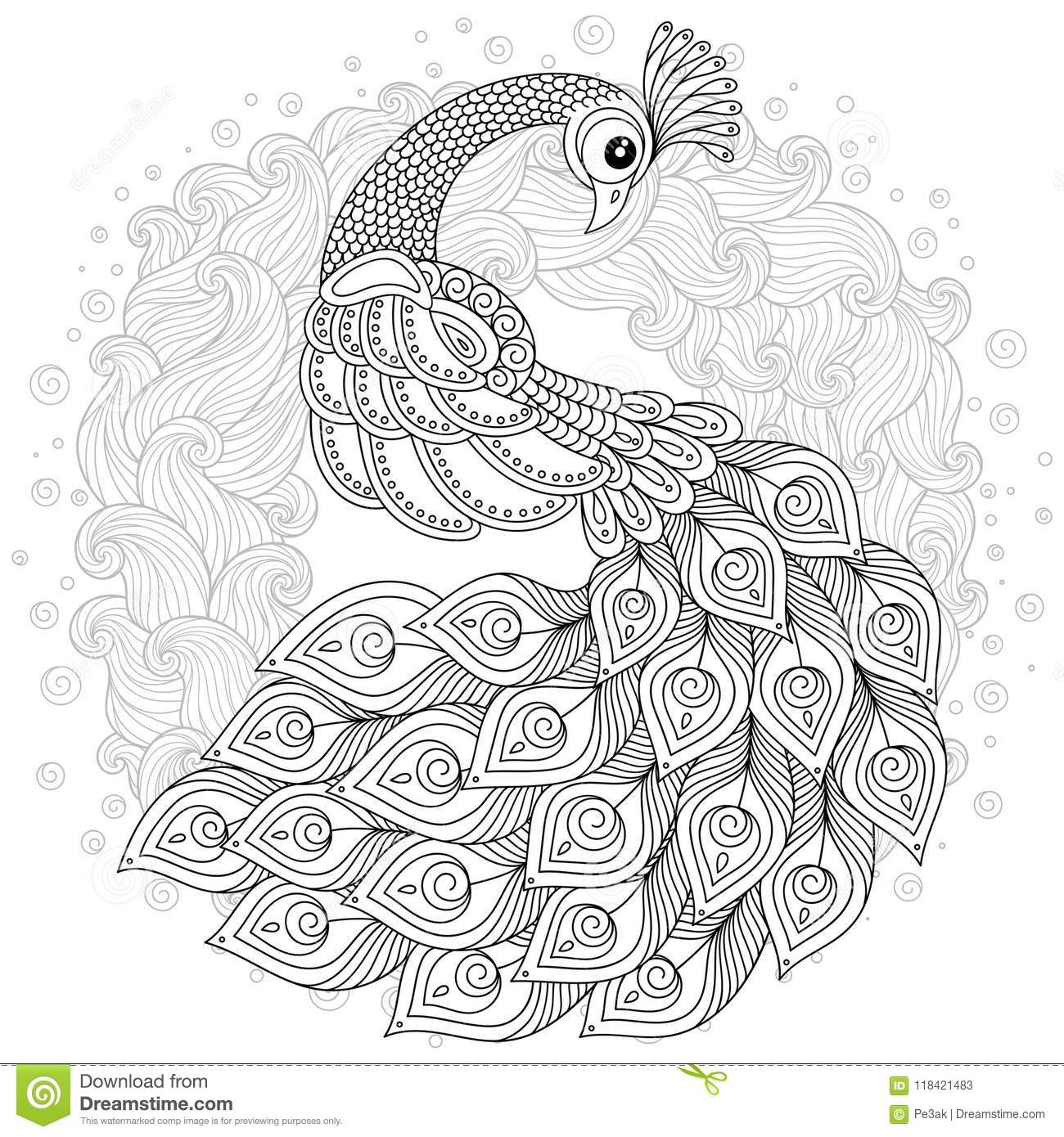 Download Peacock In Zentangle Style Adult Antistress Coloring Page Stock Vector
