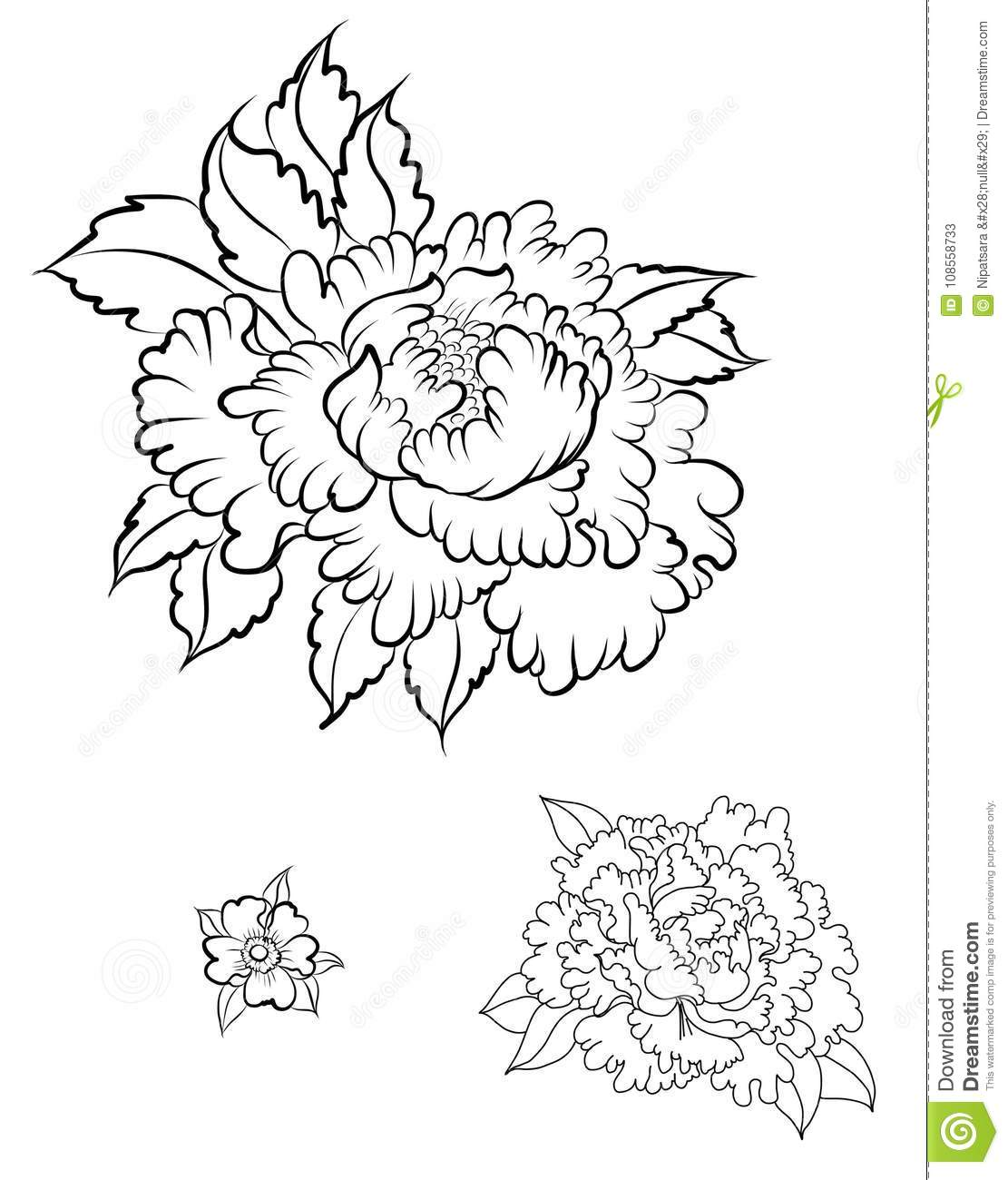 922f02d33 Hand drawn Peony flower.Chinese flower vector tattoo.Doodle art peony tattoo .
