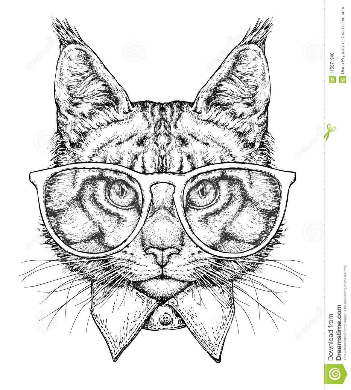 94af2aaf606c Hand drawn portrait of Cat in glasses with bow tie. Vector illustration  isolated on white