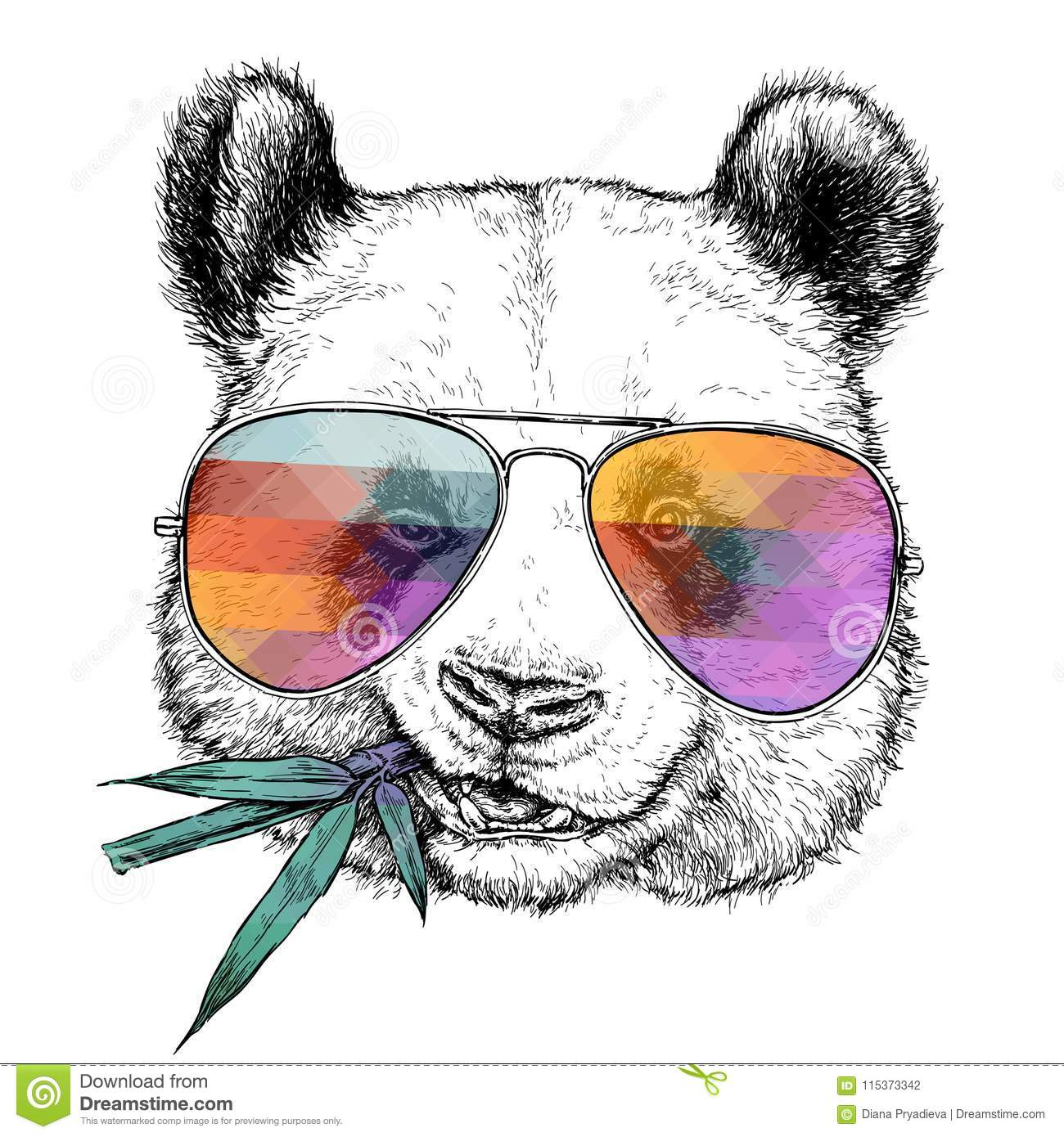 ab92cc65f14 Hand drawn portrait of Funny Panda in glasses with bamboo branch. Vector  illustration isolated on