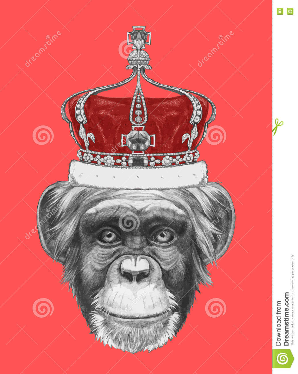 Download Hand Drawn Portrait Of Monkey With Crown Stock Vector