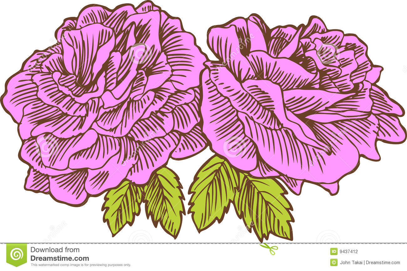 Hand Drawn Rose Stock Photo - Image: 9437420