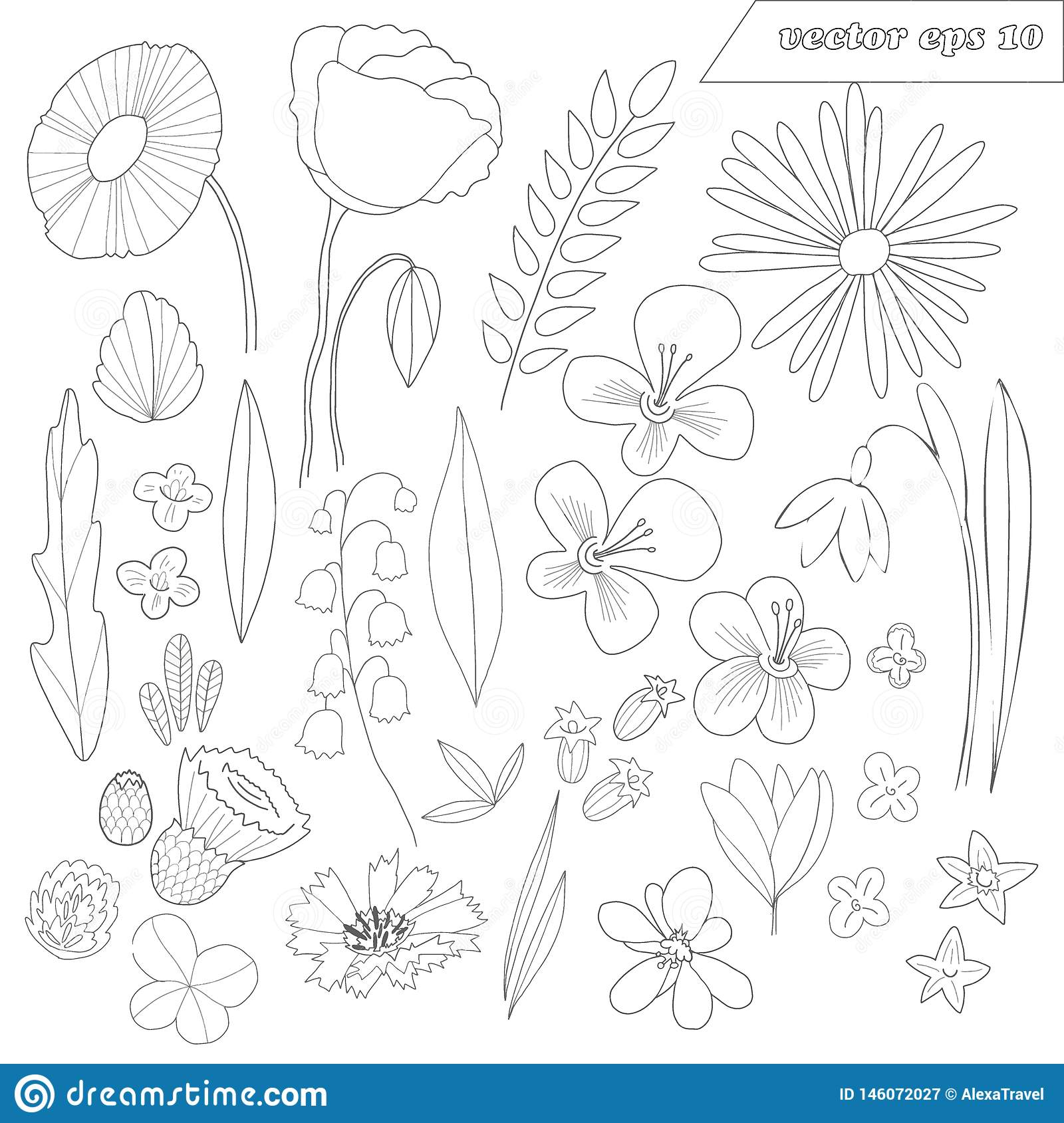 Hand drawn set of wild outlined flowers
