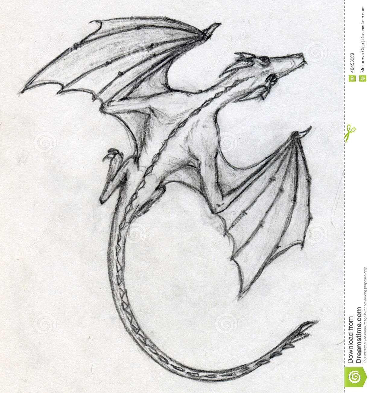 Hand drawn pencil sketch of a little dragon with bat like wings