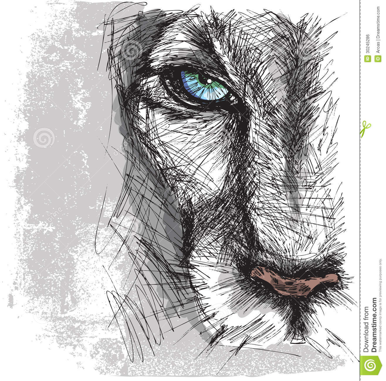 Hand Drawn Sketch Of A Lion Royalty Free Stock Image - Image: 30245286