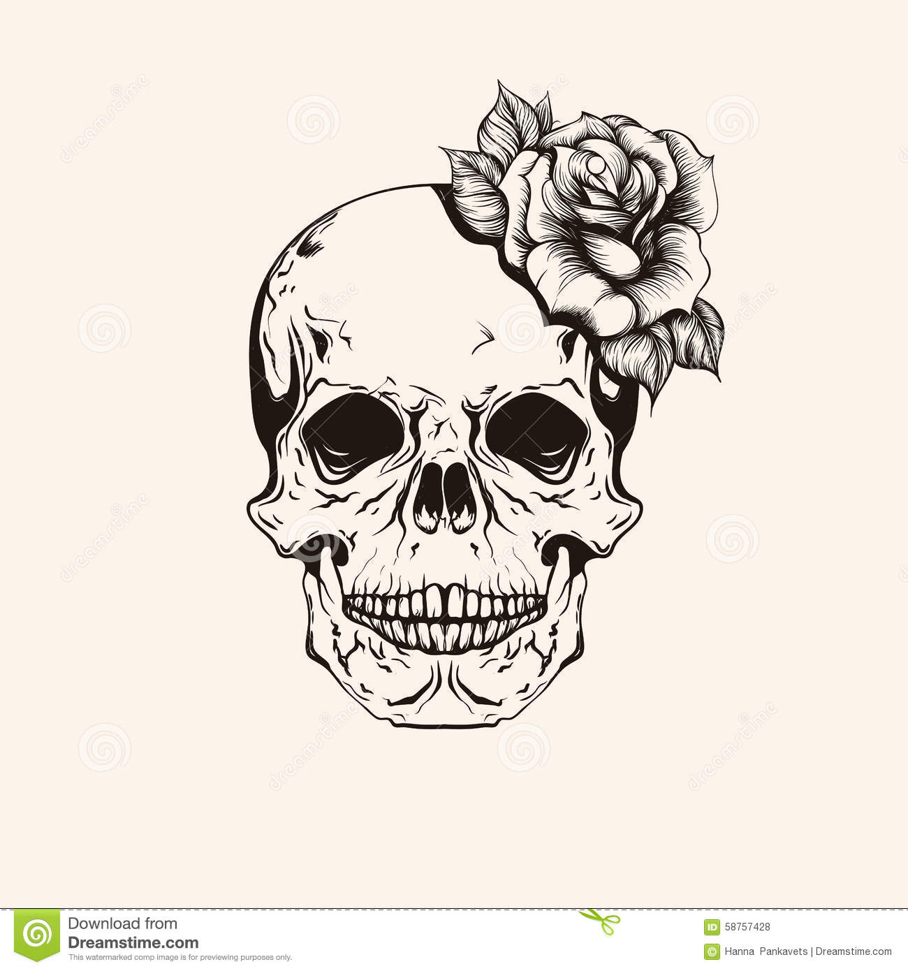 Line Art Tattoos Florida : Hand drawn sketch scull with rose tattoo line art vintage