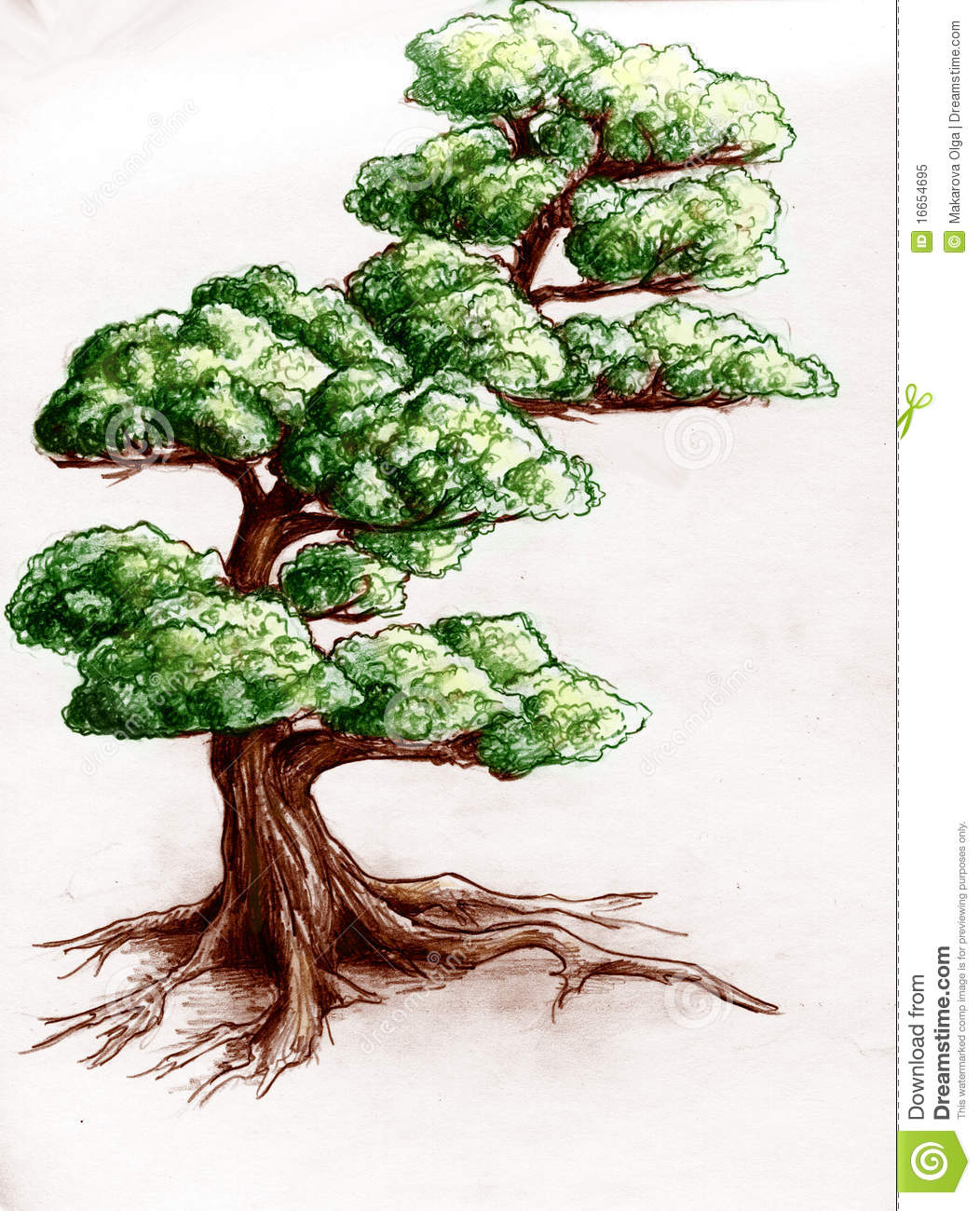 Hand Drawn Tree Stock Illustration. Illustration Of Color - 16654695