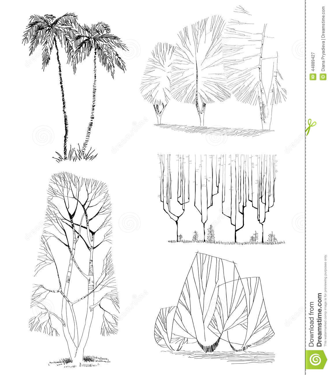 Hand drawn trees isolated sketch stock vector for Dibujo arquitectonico