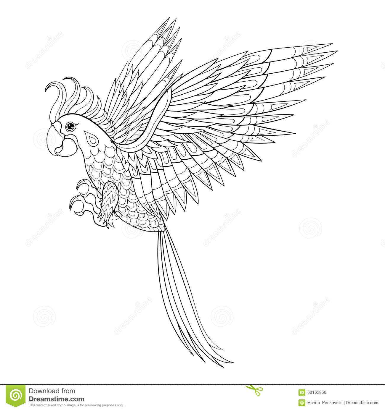 Hand Drawn Tribal Parrot, Bird Totem For Adult Coloring Page In ...