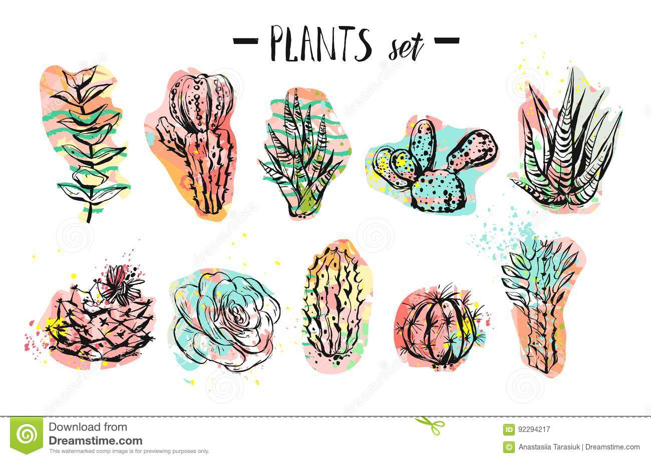 Hand Drawn Vector Abstract Graphic Creative Succulent Cactus And Plants Collection Set Colorful Artistic Brush Painted Stock Vector Illustration Of Elegant Botany 92294217