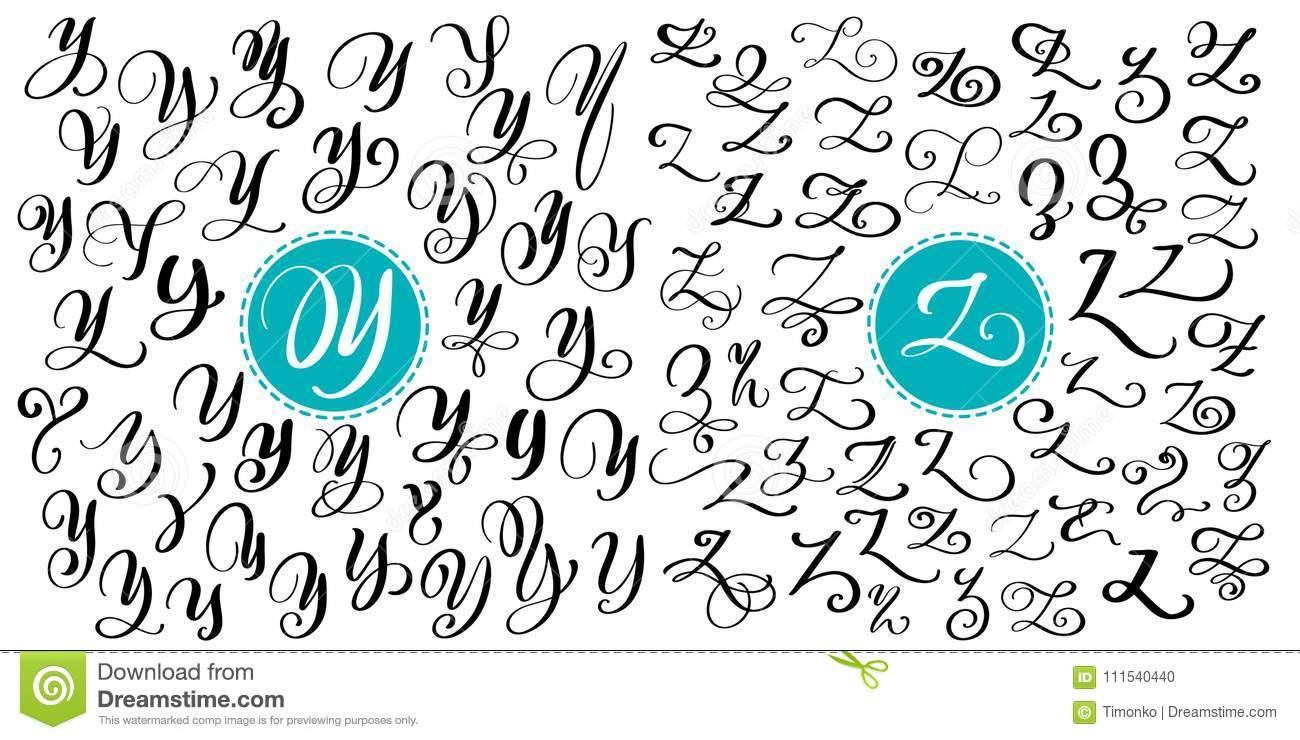 Hand Drawn Vector Calligraphy Letter Y Z Script Font Isolated
