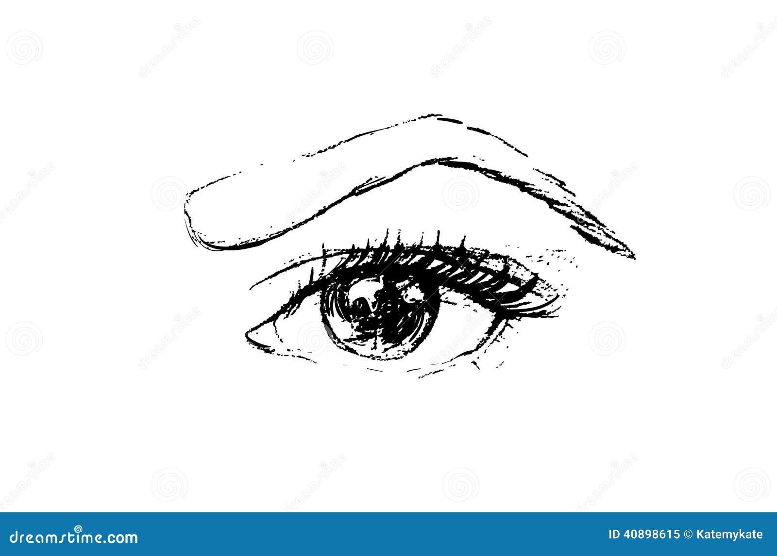 Line Drawing Eye : Hand drawn vector eye line art stock