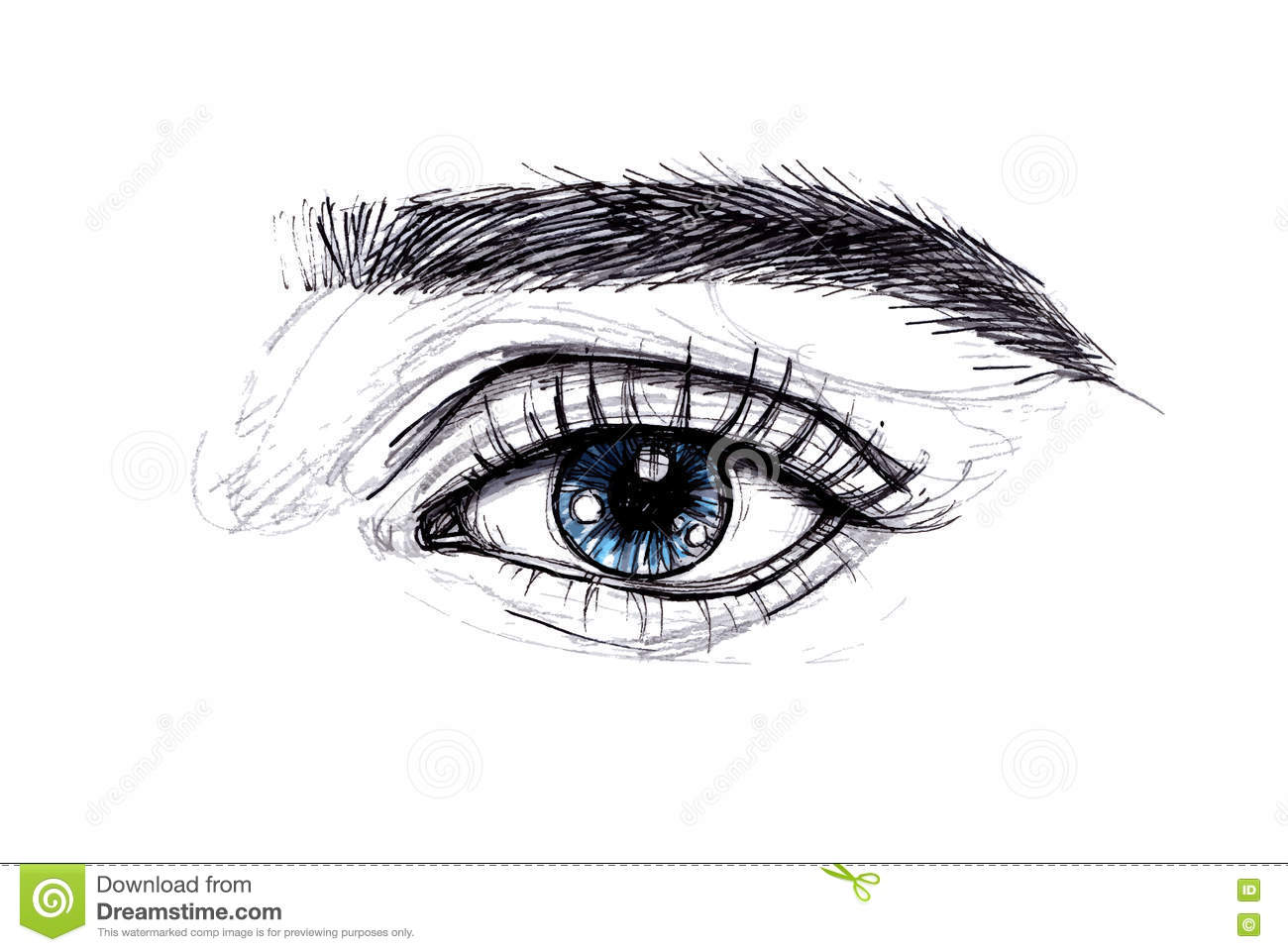 Hand Drawn Vector Illustration Beautiful Woman Eye Makeup Fash
