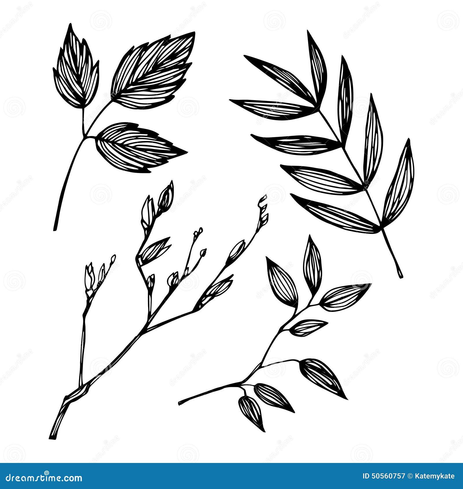 Hand-drawn Vector Illustration