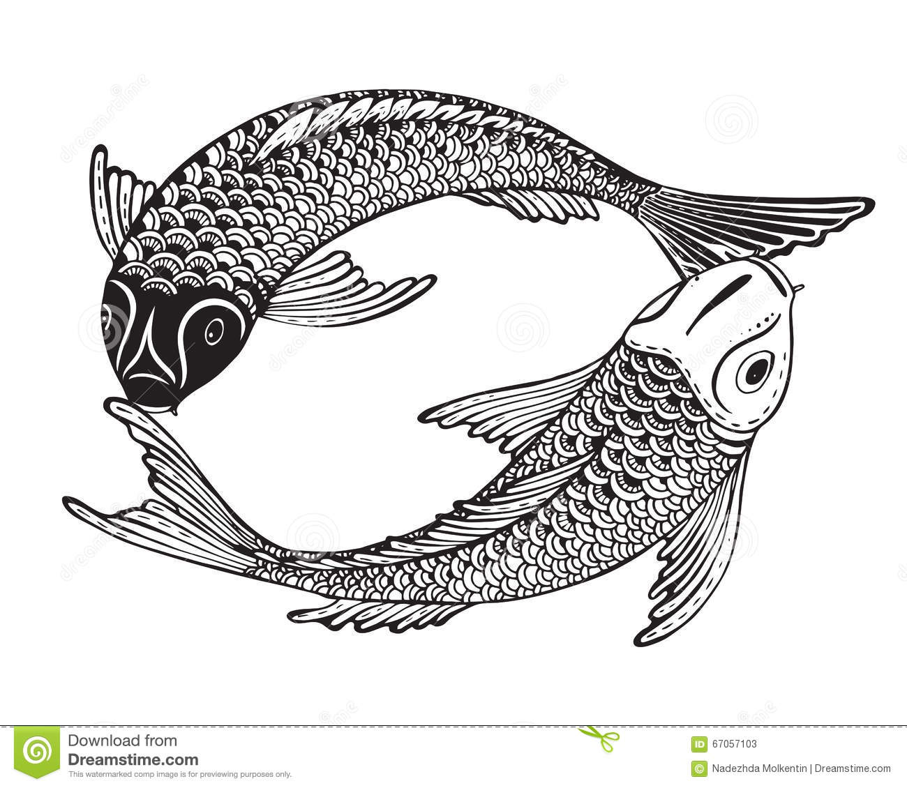 Hand drawn vector illustration of two koi fishes japanese for Black and white coy fish