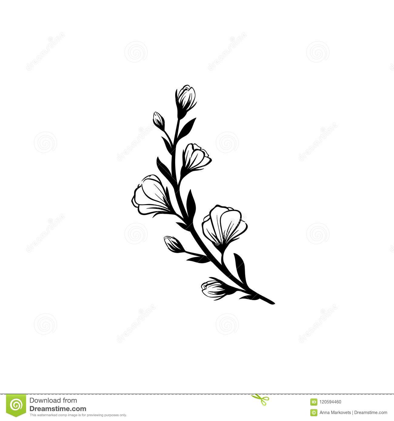 Hand Drawn Vector Vintage Element For Invitations Greeting Cards