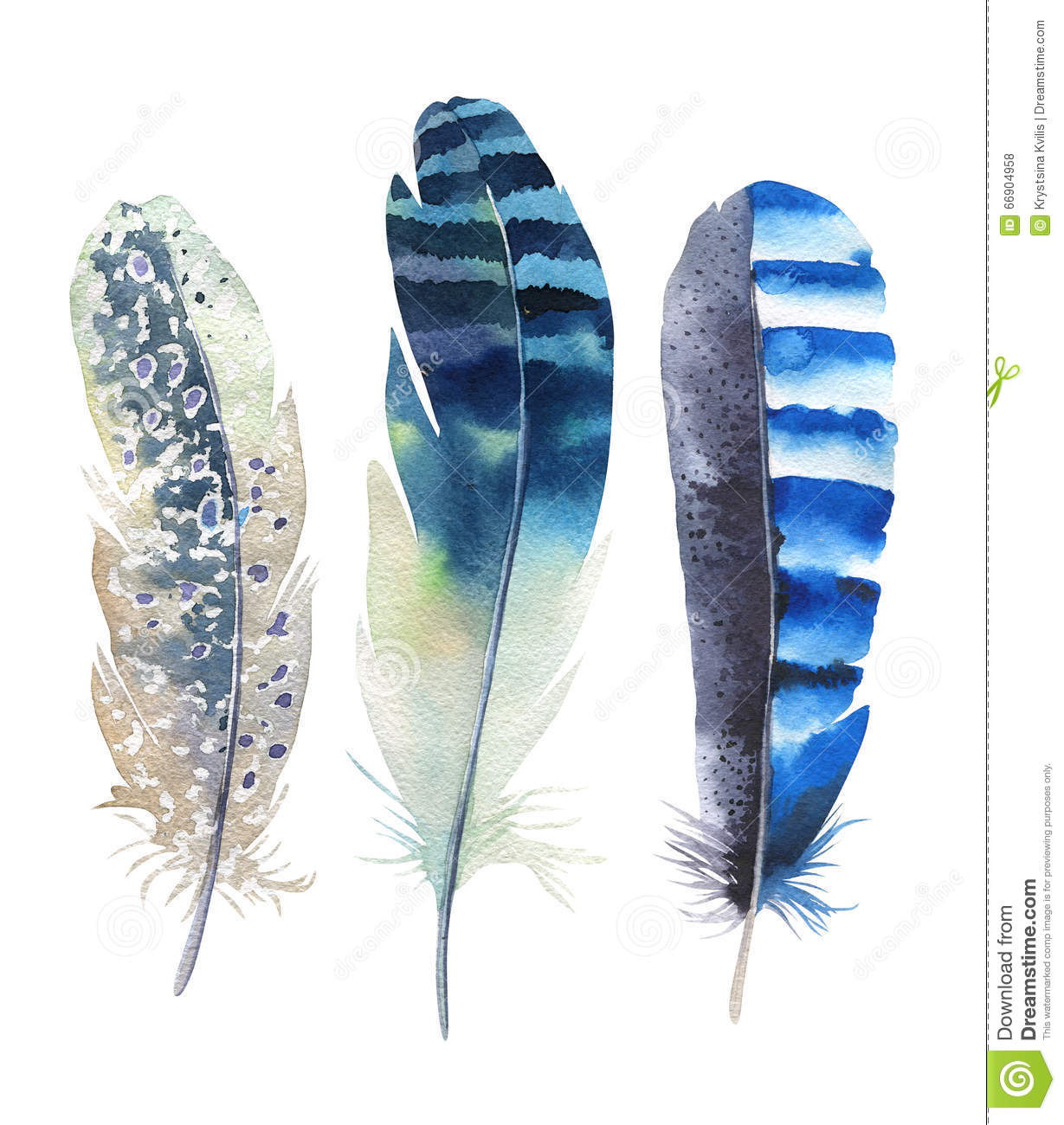 Hand drawn watercolor feather set. Boho style. illustration isolated on white. Design for T-shirt, invitation, wedding card.