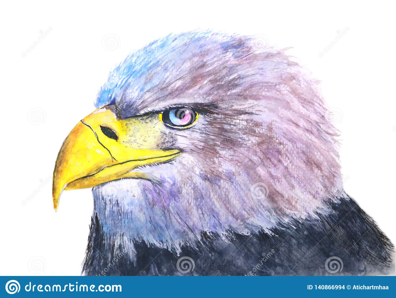 Hand-drawn watercolor isolated illustration of a bird eagle in white background
