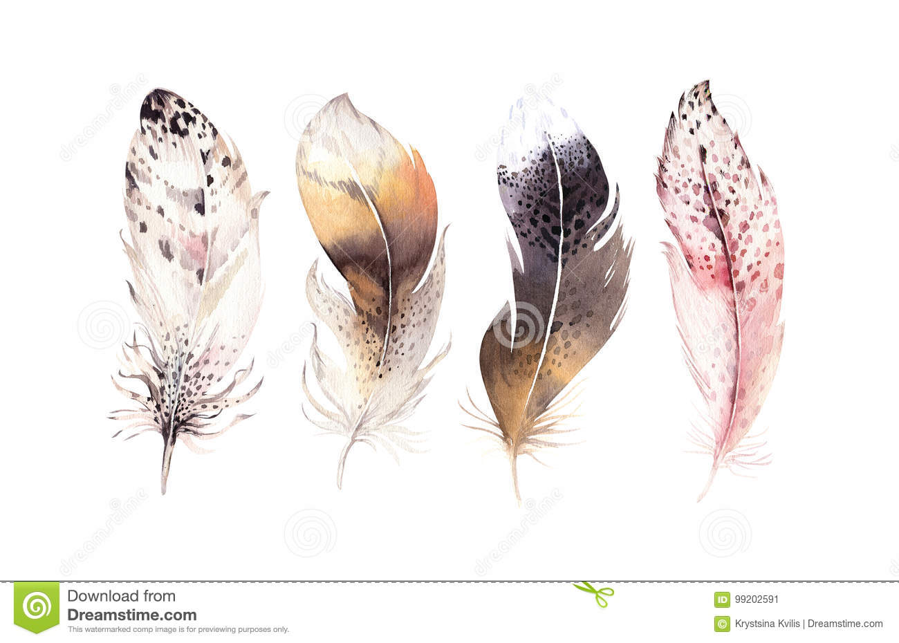 Hand drawn watercolor paintings vibrant feather set. Boho style wings. illustration isolated on white. Bird fly design