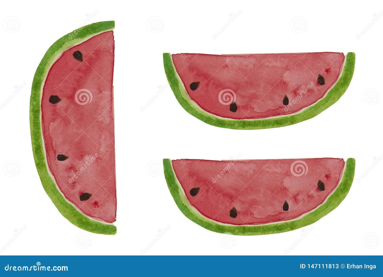 Hand drawn watercolor watermelon slice. Summer illustration. Watermelon design element, template for summer background