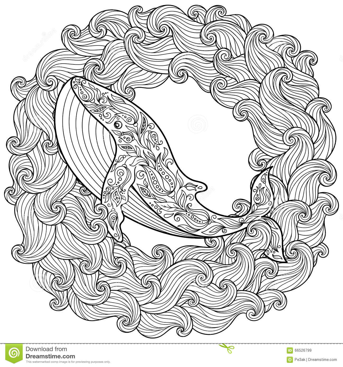 Vector Zentangle Whale Print For Adult Coloring Page Hand Drawn