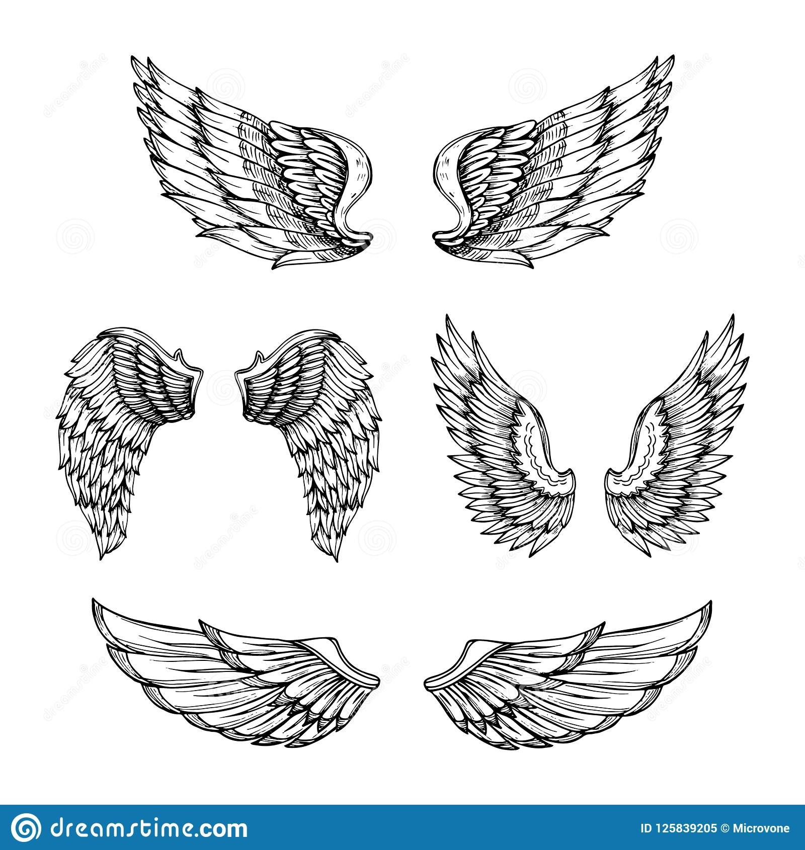 Hand Drawn Wing Sketch Angel Wings With Feathers Vector Tattoo