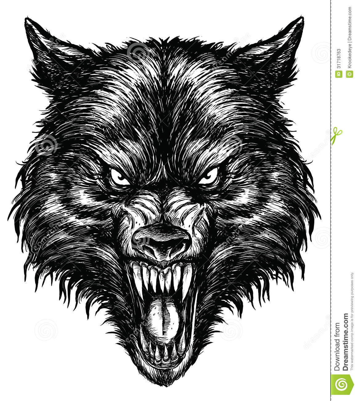 Hand Drawn Wolf Linework Vector Stock Photos Image 31718763