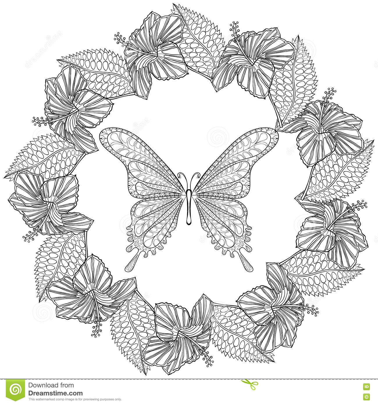 Hand Drawn Zentangle Butterfly In Wreath Of Hibiskus