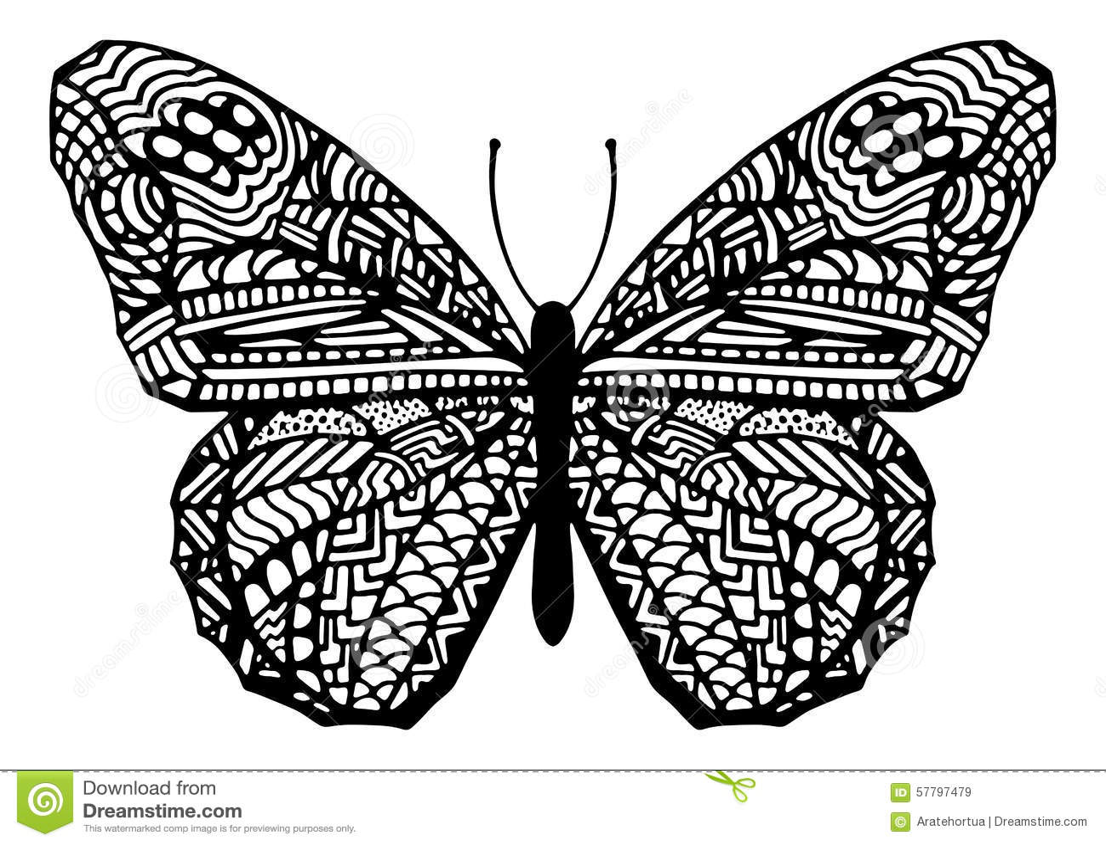 Zentangle Designs Butterflies Www Imgkid Com The Image