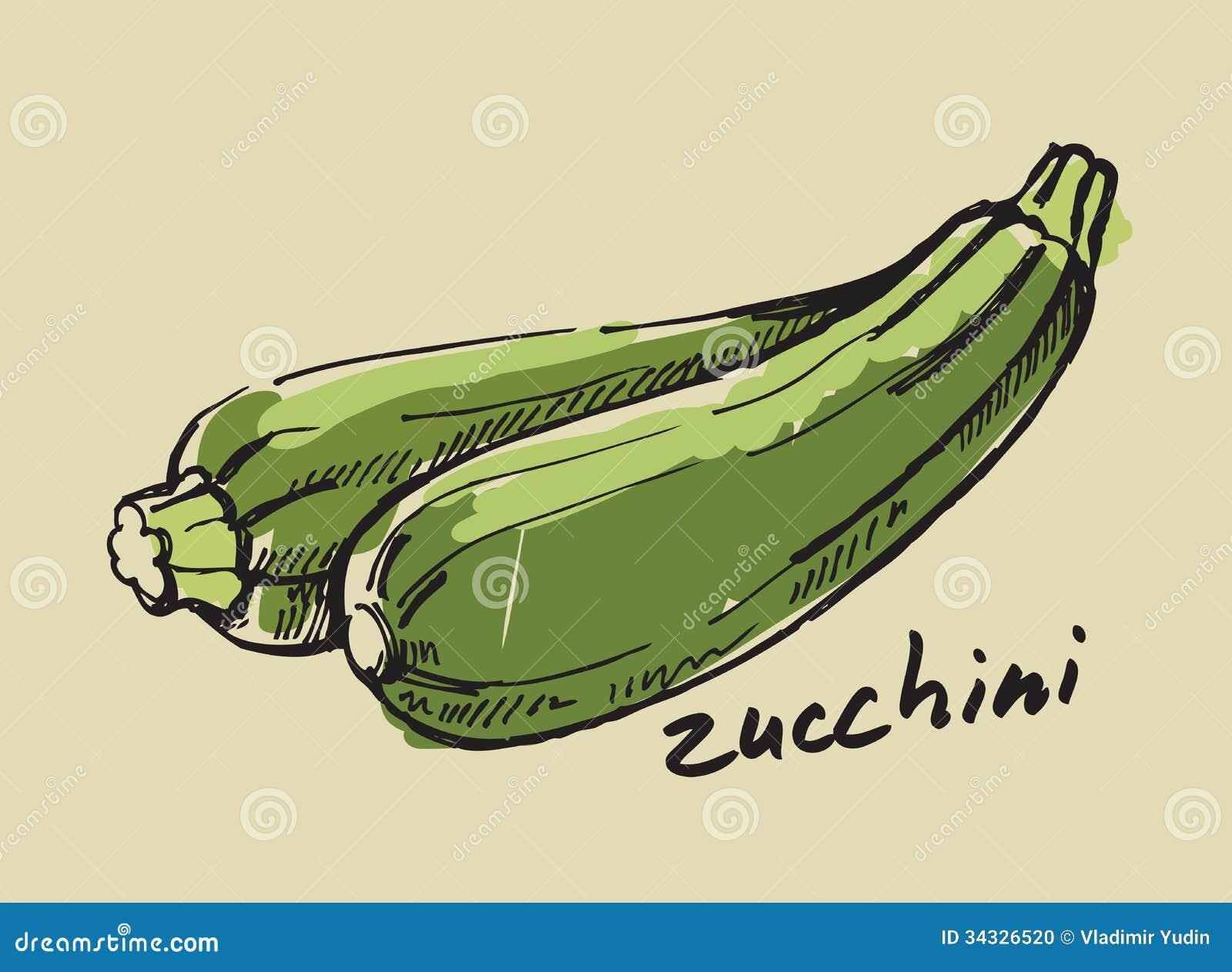 Computer Kitchen Design Hand Drawn Zucchini Stock Photo Image 34326520