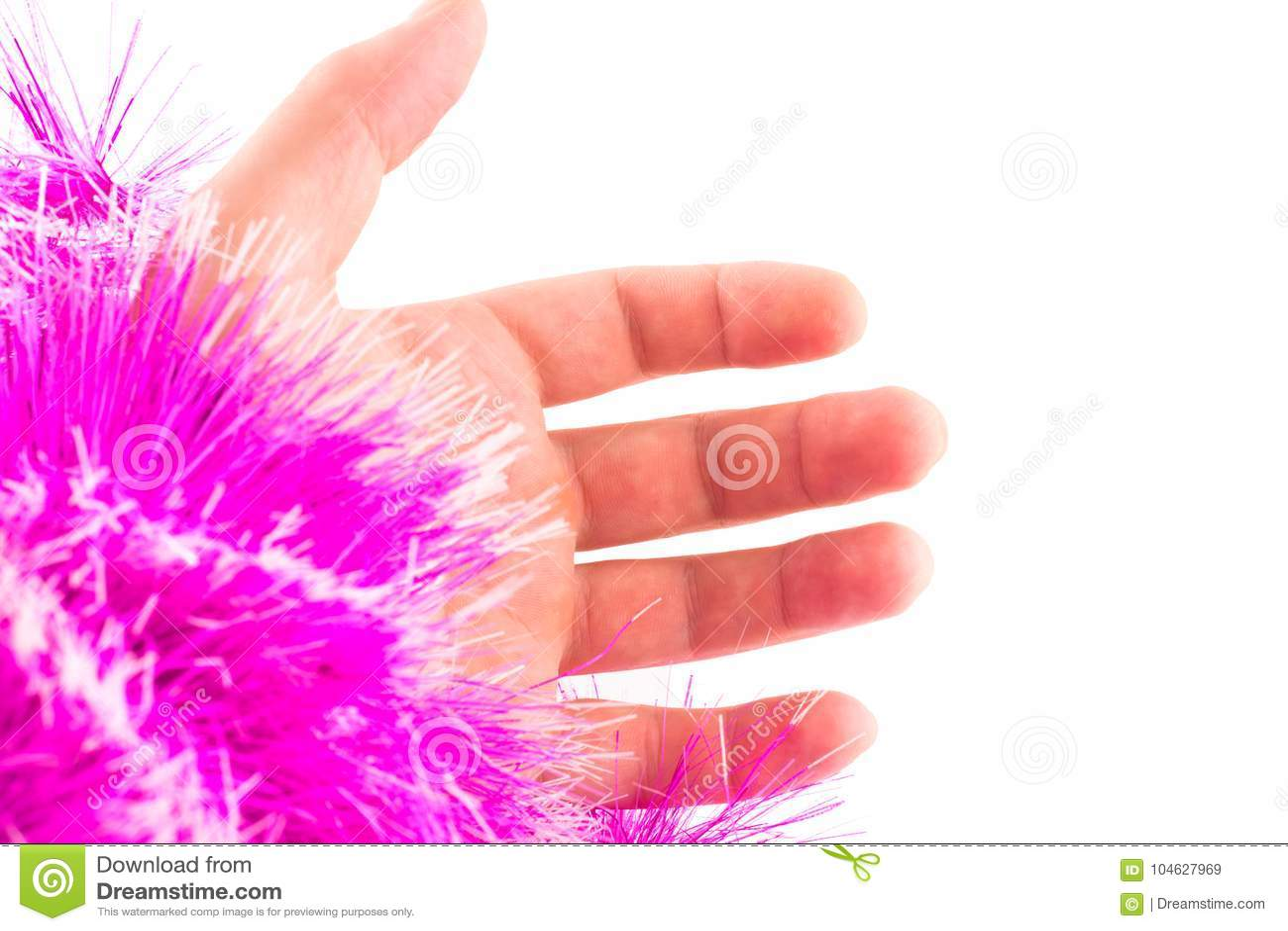 Download Hand En Pluizige Purpere Koker Stock Afbeelding - Afbeelding bestaande uit palm, deel: 104627969