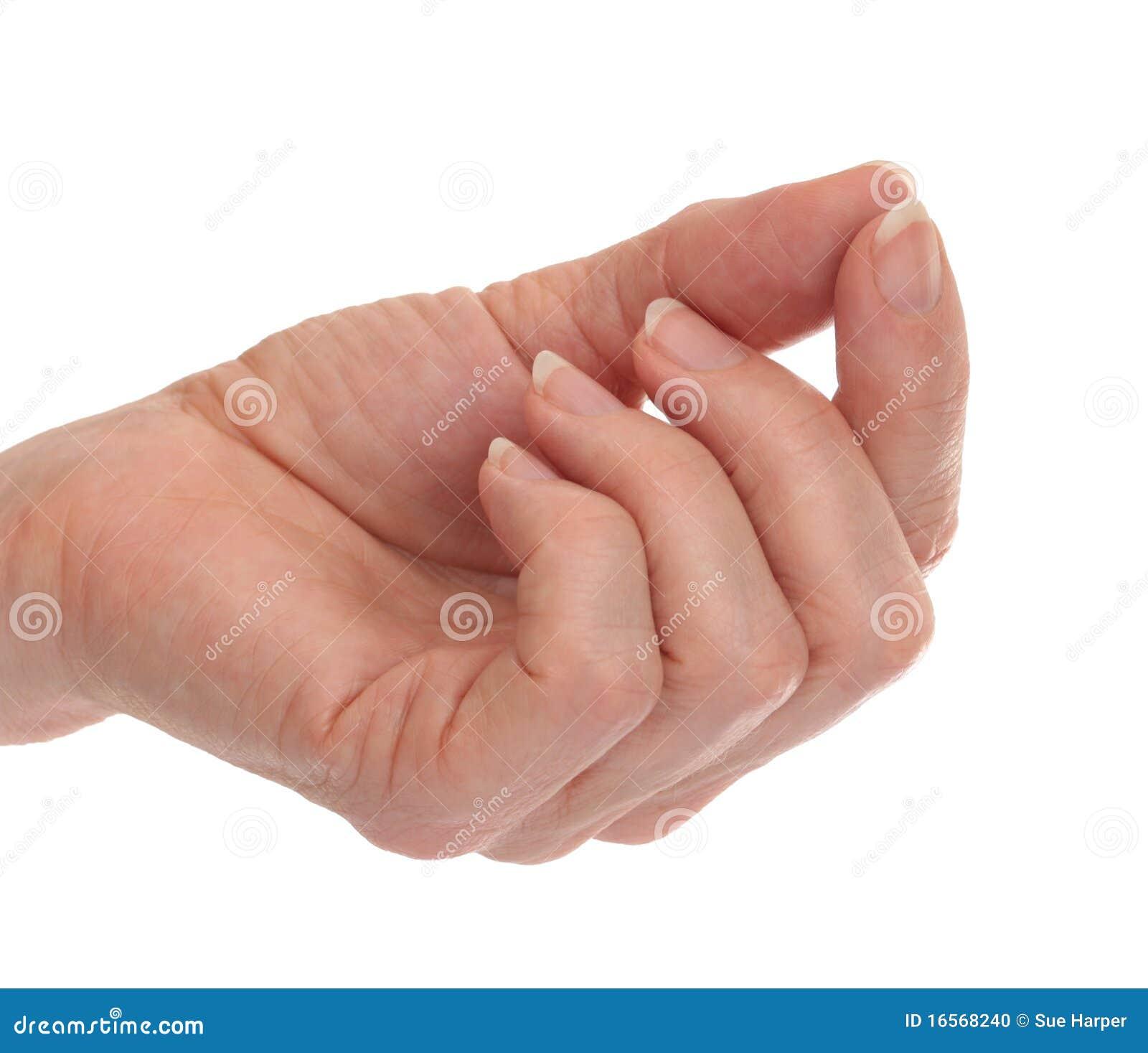 Index Finger Thumb