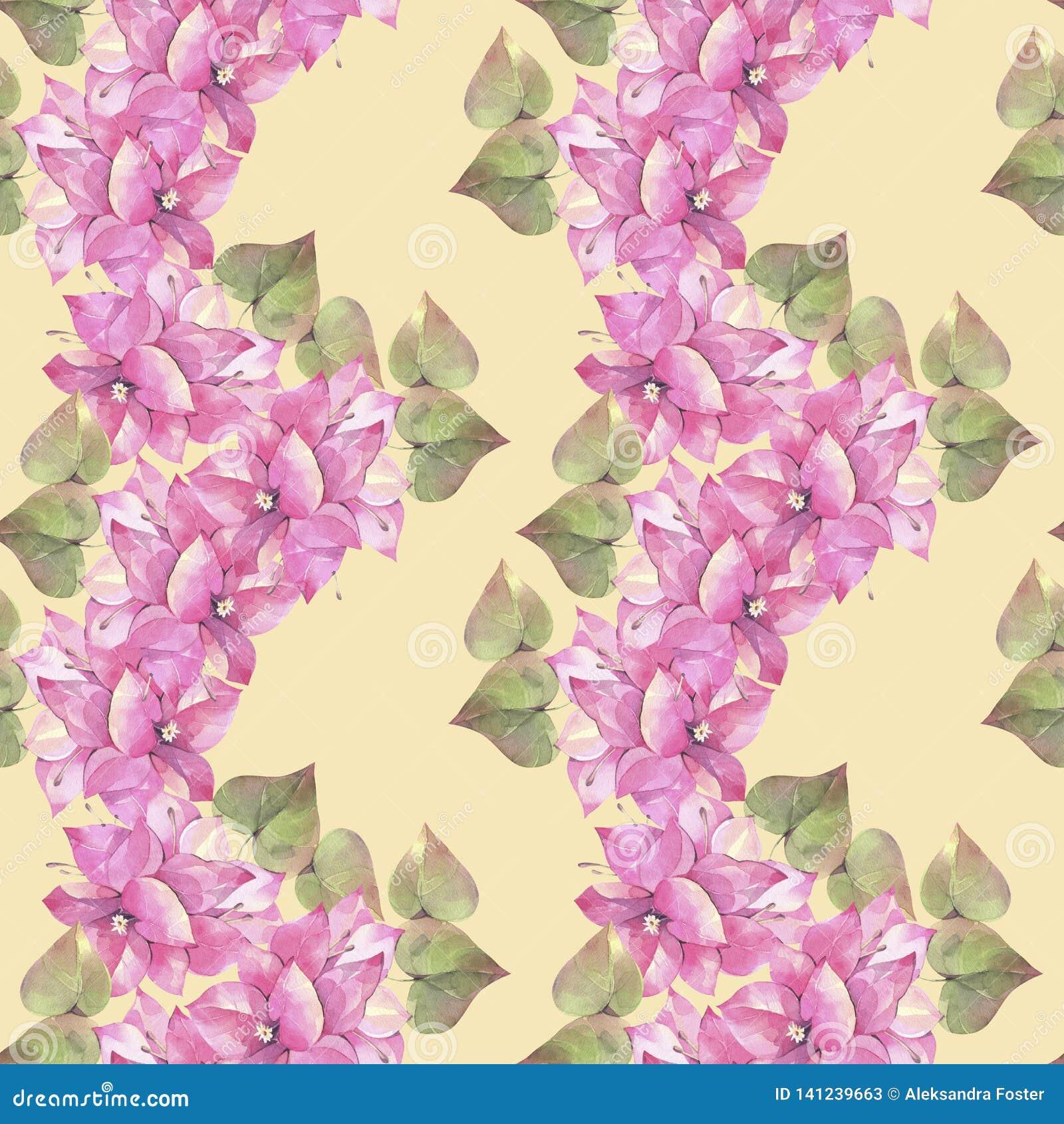 Hand geschilderde waterverfillustratie Naadloos patroon met bloemen van bougainvillea