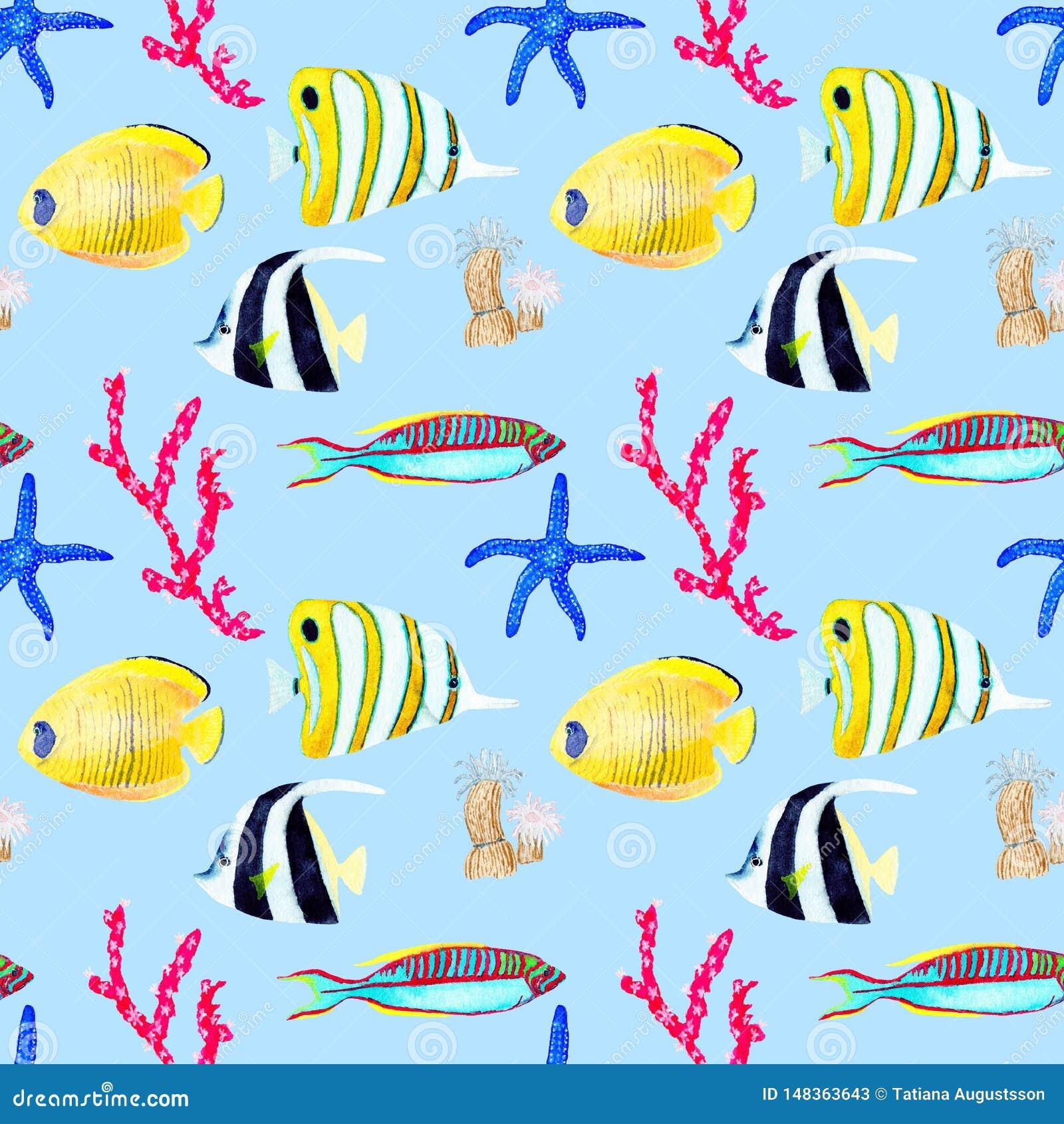 Hand getrokken seemless patroon in waterverf overzees wereld natuurlijk element Koralenshells vissen op baby blauwe achtergrond