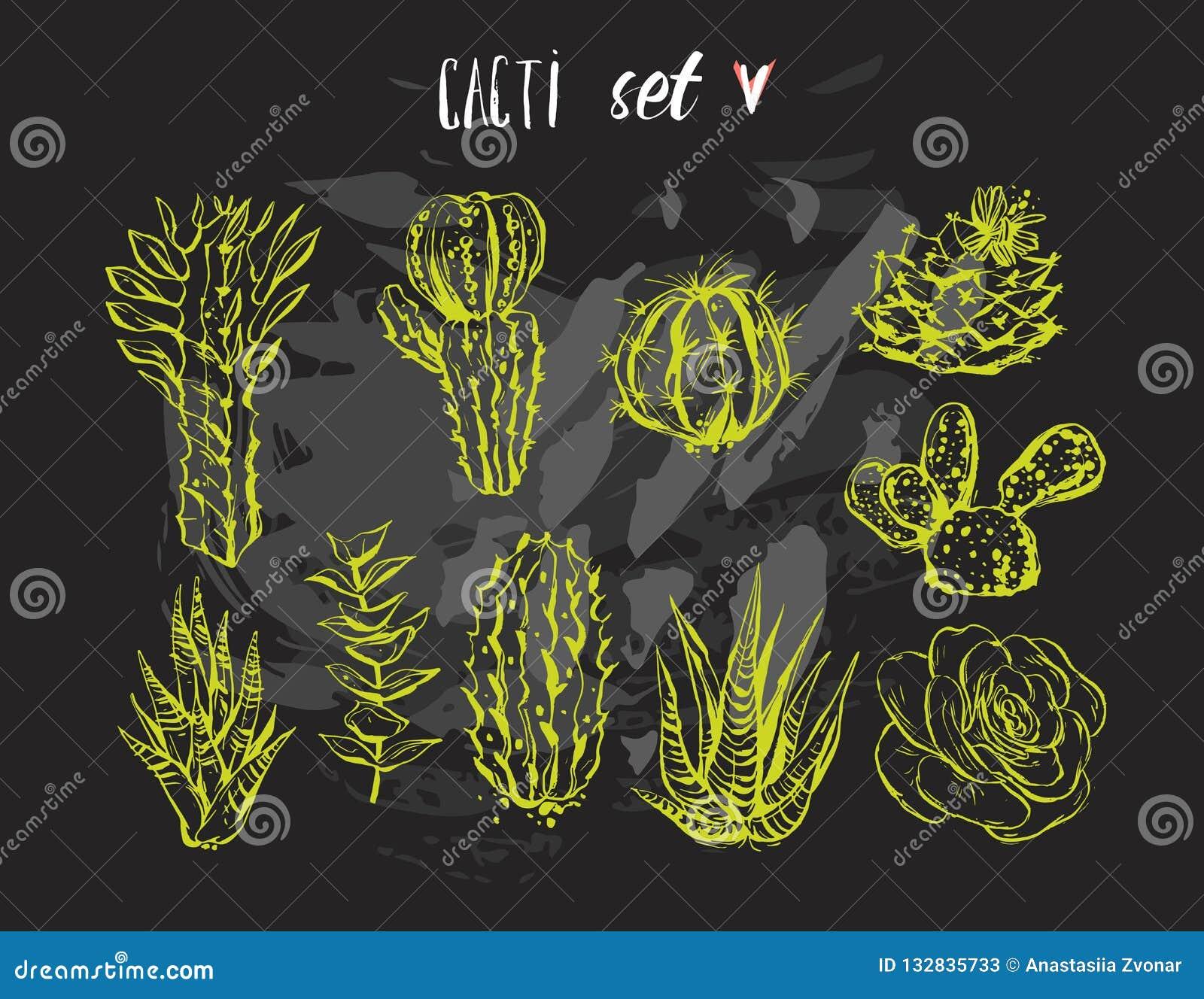 Hand getrokken vector grafische creatieve succulente die, cactus en van de installatiesinzameling reeks op zwarte achtergrond wor