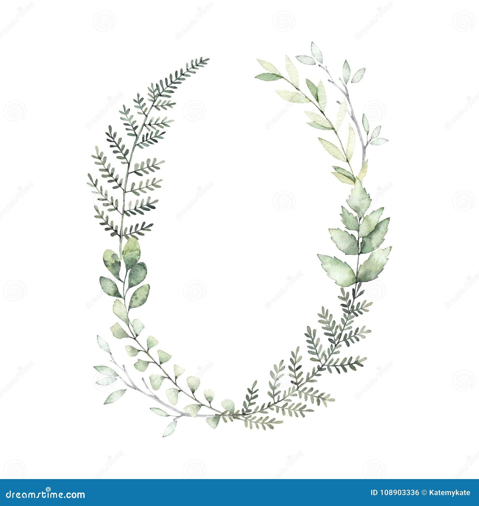 Hand gezeichnete Aquarellillustration Botanischer Kranz des grünen Brs