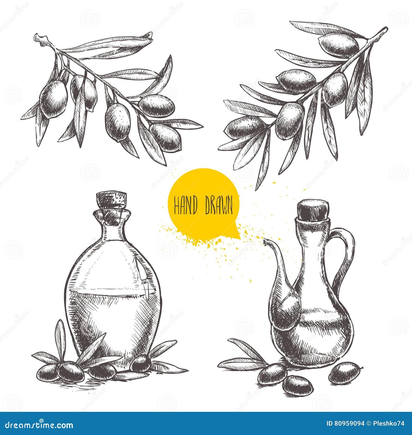 Hand gezeichneter Satz Ölzweige mit Oliven und Flaschen mit Olivenöl