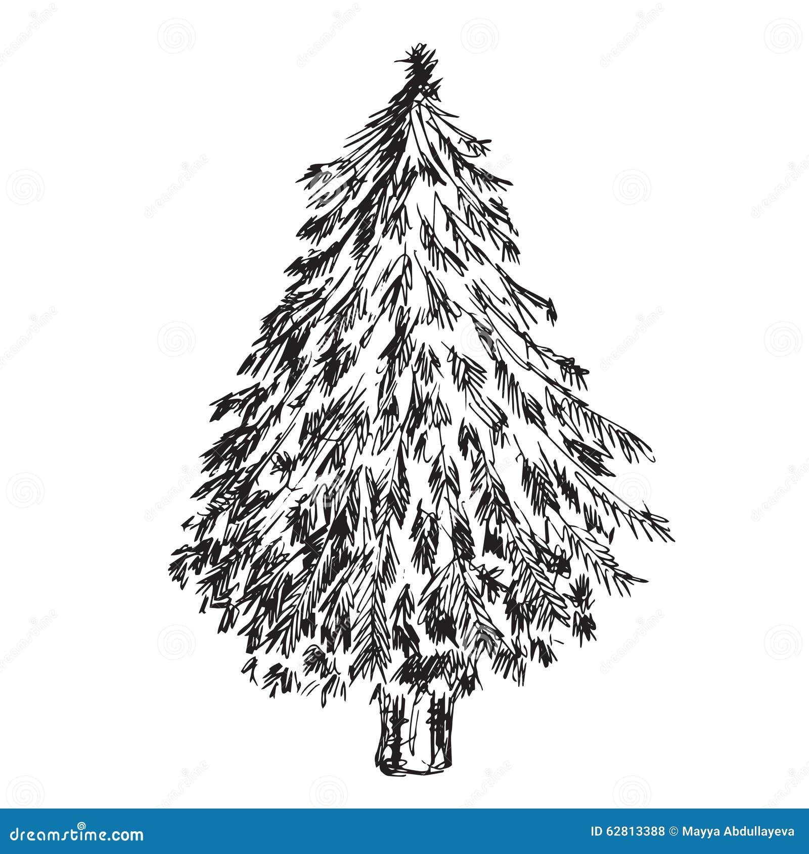 hand gezeichneter weihnachtsbaum vektor abbildung illustration von betriebe ansammlung 62813388. Black Bedroom Furniture Sets. Home Design Ideas