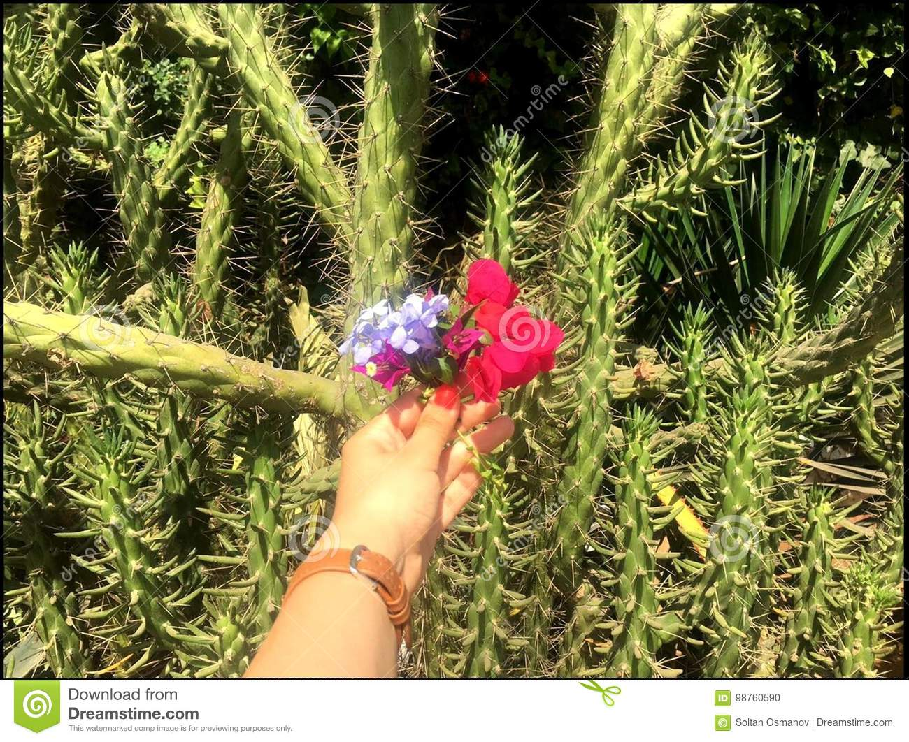 Hand of a girl with beautiful flowers on a background of exotic hand of a girl with beautiful flowers on a background of exotic plants izmirmasajfo