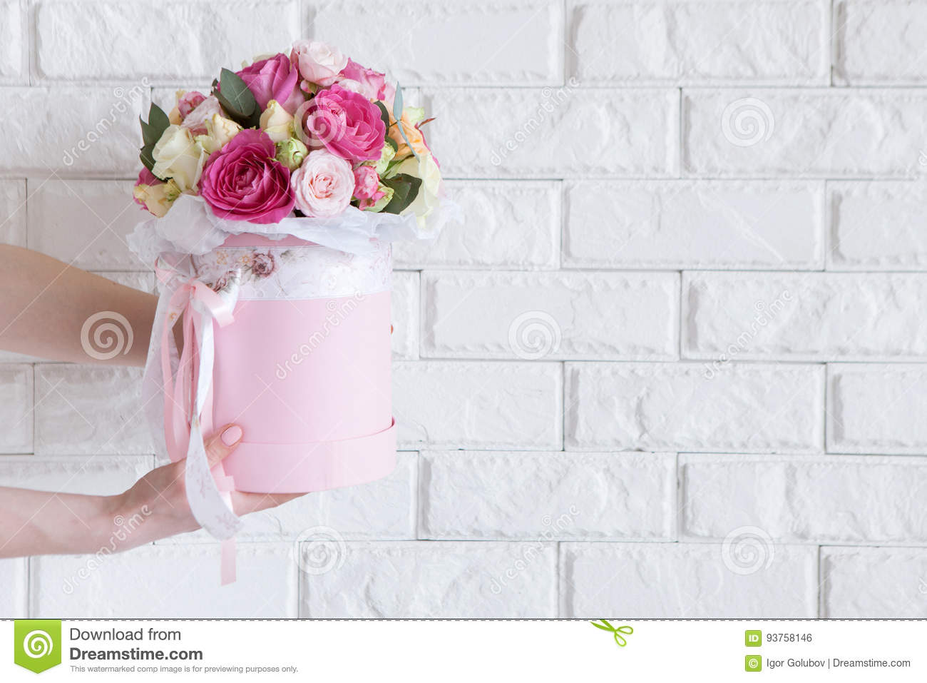 Hand Gives Bunch With Pink Roses On White Stock Photo - Image of ...