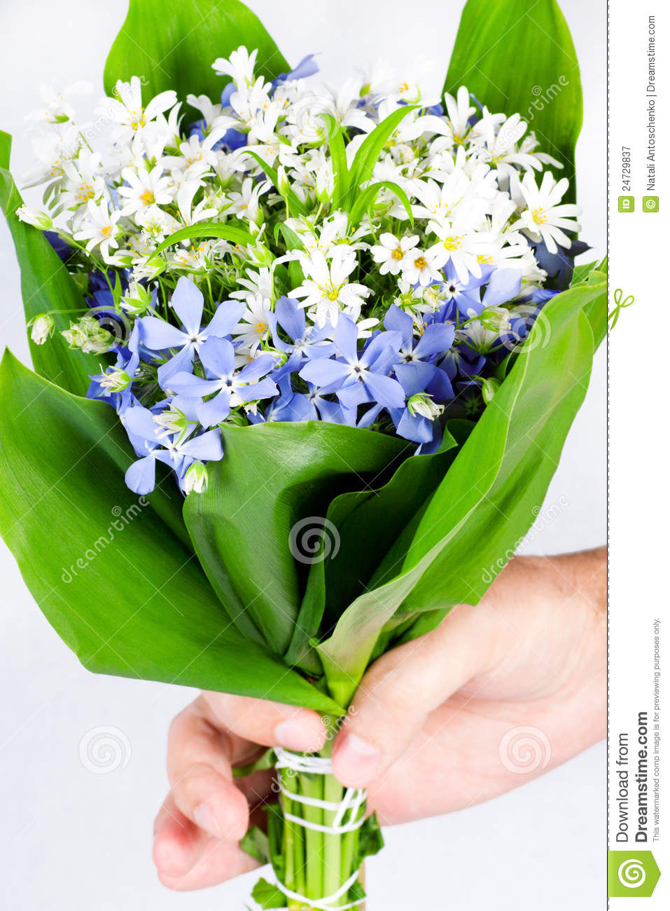 Hand Giving A Bouquet Of Spring Flowers Stock Image Image Of Herb