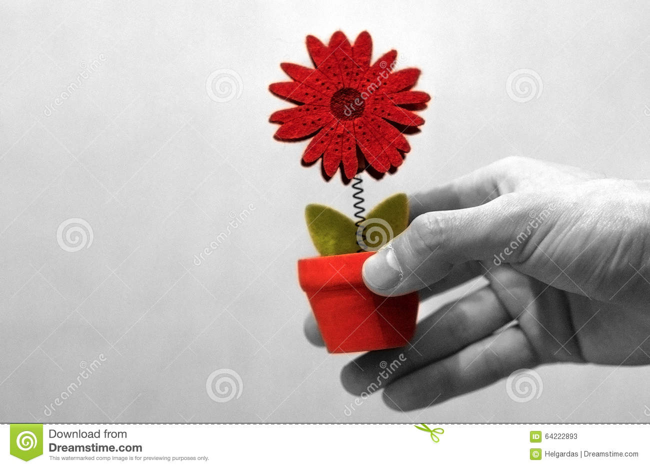 hand giving a flower stock image image of black help 64222893