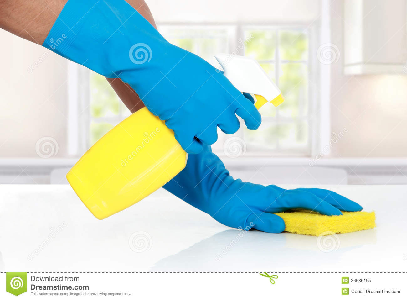 Hand With Glove Using Cleaning Sponge To Clean Up Royalty