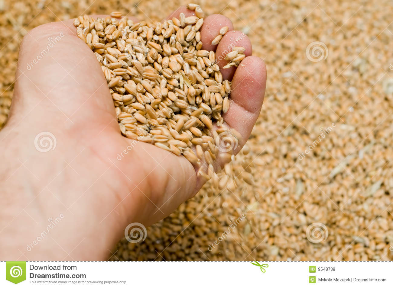 Hand with grains